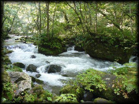 奥入瀬渓流 奥入瀬渓流:写真 雲井の滝 雲井の滝 玉簾の滝 玉簾の滝 九段の滝 九段の滝 五両の